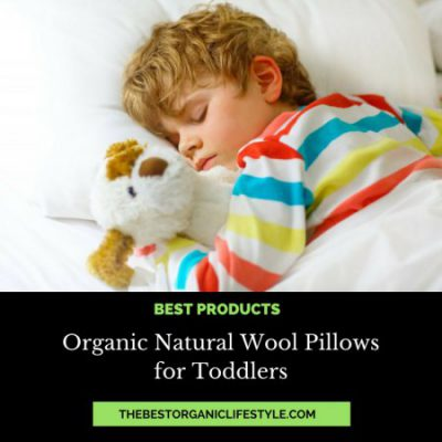 Organic Natural Wool Pillows for Toddlers