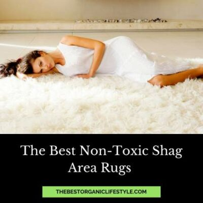best non-toxic shag area rugs