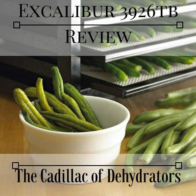 excalibur 3926tb dehydrator review