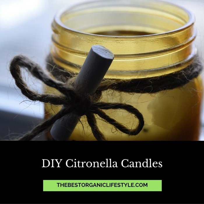 DIY Citronella Candles | The Best Organic Lifestyle
