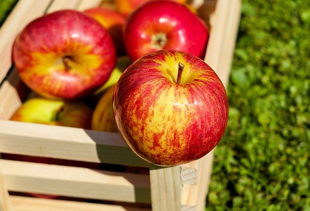 Make your own apple cider vinegar