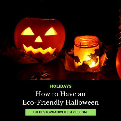 how-to-have-an-eco-friendly-halloween