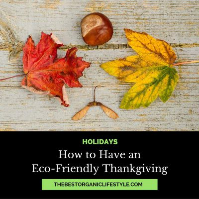 how-to-have-an-eco-friendly-thanksgiving