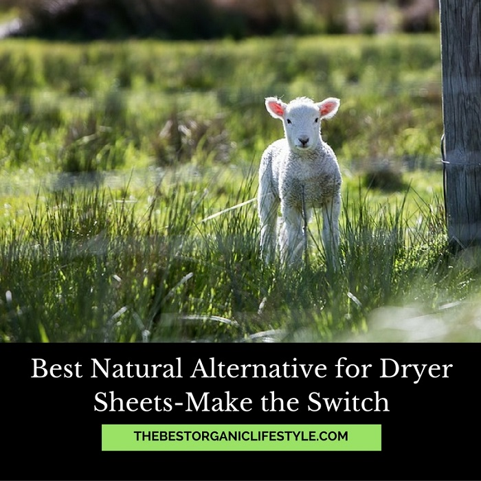 Best Natural Alternative For Dryer Sheets Make The Switch