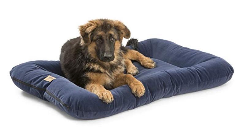 best earth friendly pet beds