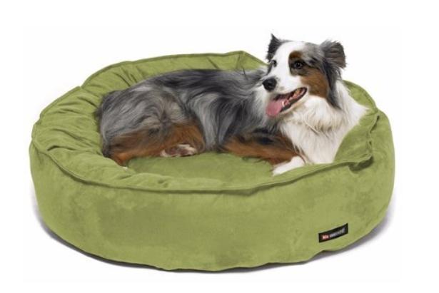 best eco dog beds