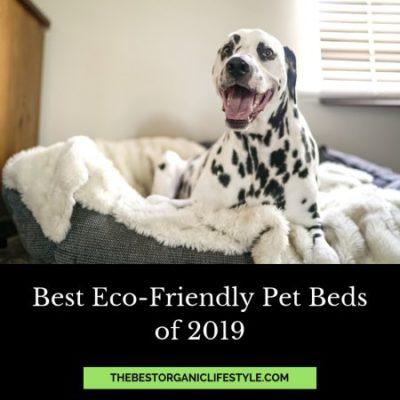 best eco-friendly pet beds