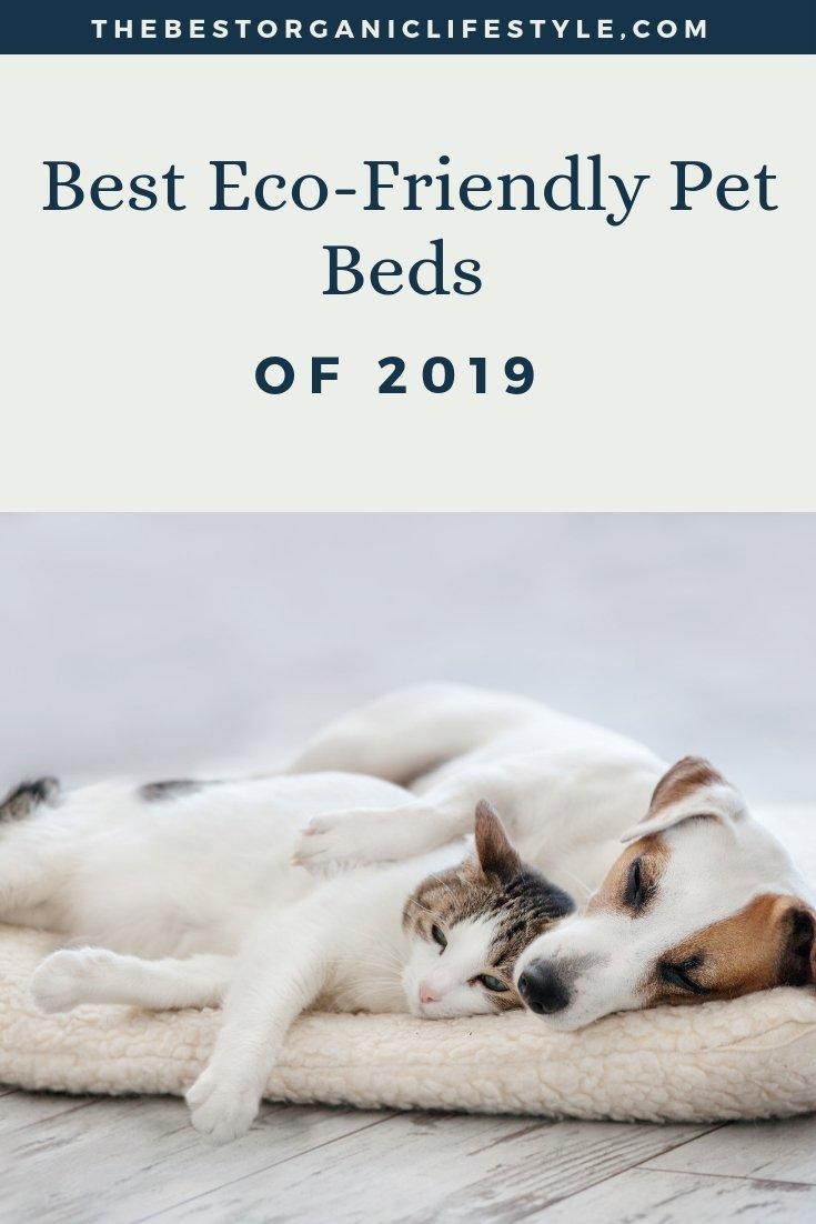 best environmentally friendly pet beds