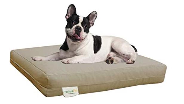 best organic pet beds