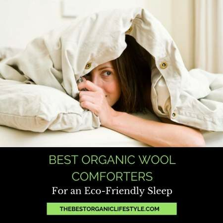 The best organic wool comforters