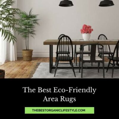 best eco-friendly area rugs