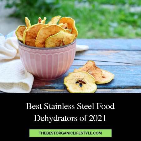Best Stainless Steel Food Dehydrators of 2021