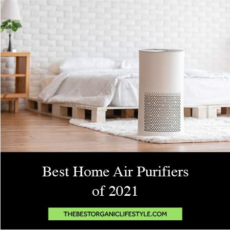 Best Home Air Purifiers