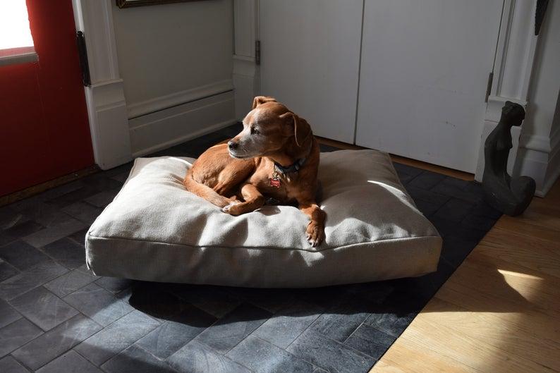 Best Eco-Friendly Pet Beds - BeanProductsInc