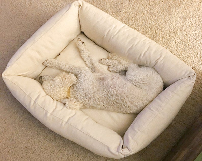 The Best Eco-Friendly Pet Beds - HomeofWool on Etsy