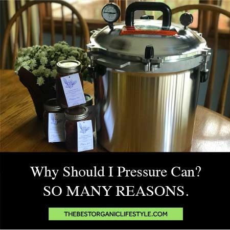 Why should i pressure can? So many reasons!